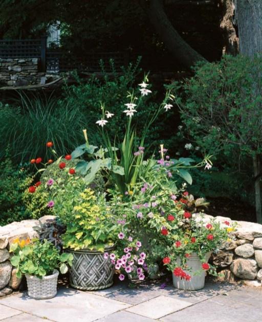 Pots of lush annuals add a color splash.