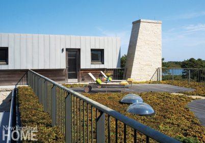 Hutker-Lopez-MarthasVineyard Green Roof