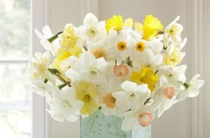 Bring Spring into your Home with Cheerful Daffodil Arrangements
