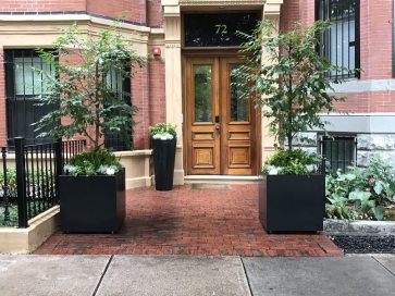 Carefully placed planters create a defined entrance with a sense of importance.
