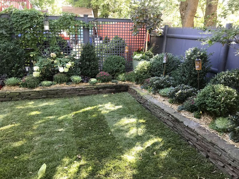 A petite urban garden is chock-full of interesting plantings. A stacked stone retaining wall keeps it organized.