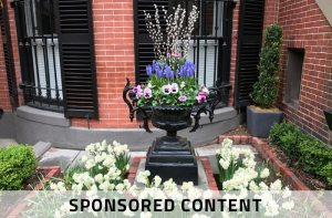 Boston-based Potted Up Creates Gorgeous Gardens, Scaled for the City