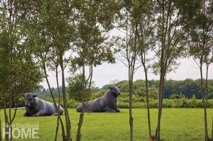 Bronze bull sculpture by Peter Woytuk