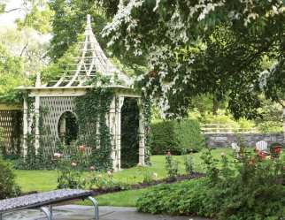 A distance shot of a gazebo surrounded by rose bushes