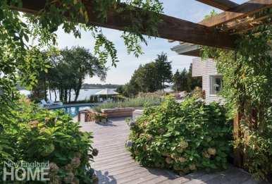 Jamestown Island backyard