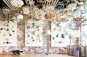 chloe winston lighting design cat in showroom