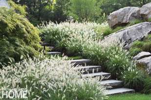 """Lush fountain grass and a weeping Japanese maple soften a pathway through the garden. """"There's never a wrong moment for a Japanese maple. They are gentle, agreeable souls,"""" says Parker."""