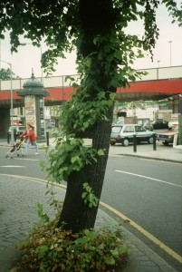 Lewisham High Street