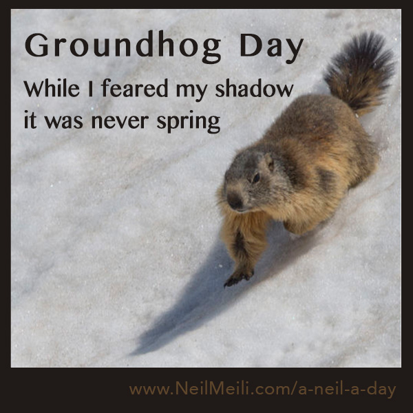 While I feared my shadow it was never spring