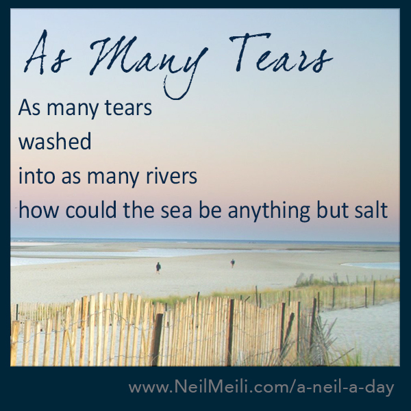 As many tears washed into as many rivers  how could the sea be anything but salt