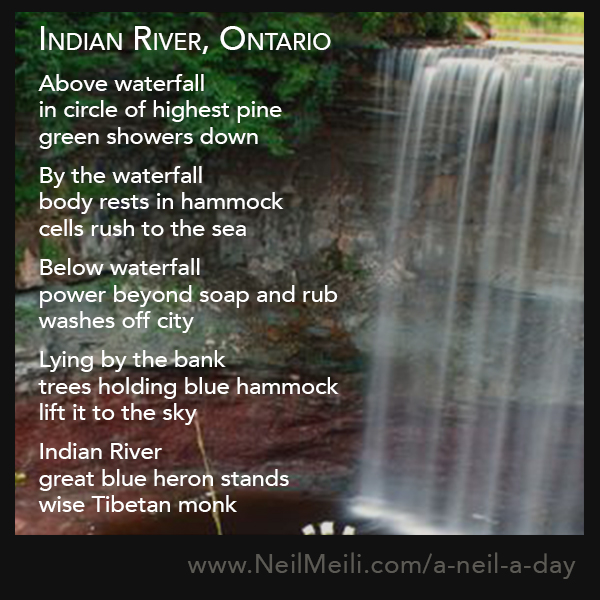Above waterfall in circle of highest pine green showers down  By the waterfall body rests in hammock cells rush to the sea  Below waterfall power beyond soap and rub washes off city  Lying by the bank trees holding blue hammock lift it to the sky  Indian River great blue heron stands wise Tibetan monk