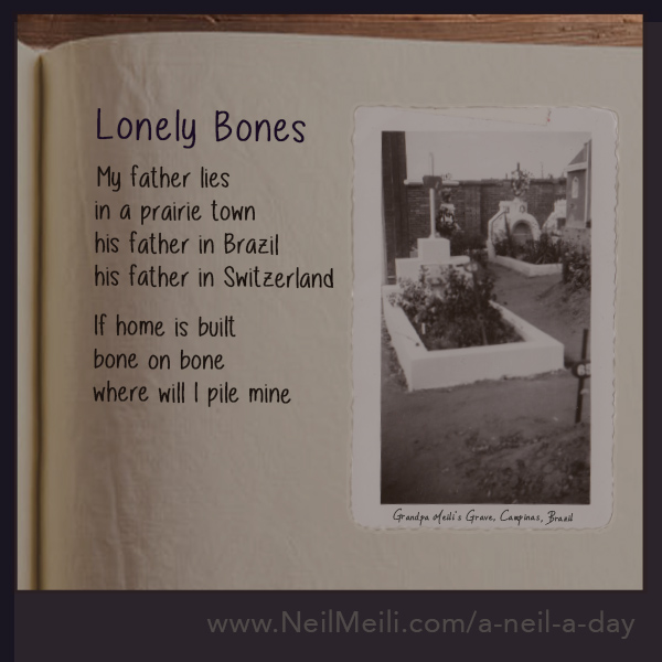 My father lies in a prairie town his father in Brazil his father in Switzerland If home is built bone on bone where will I pile mine
