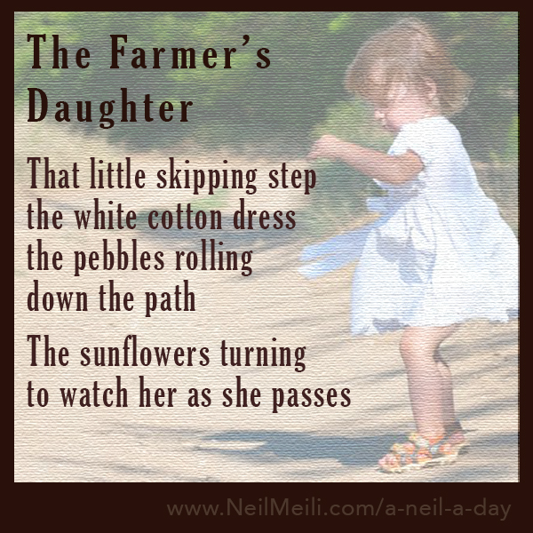 That little skipping step the white cotton dress the pebbles rolling down the path  The sunflowers turning to watch her as she passes