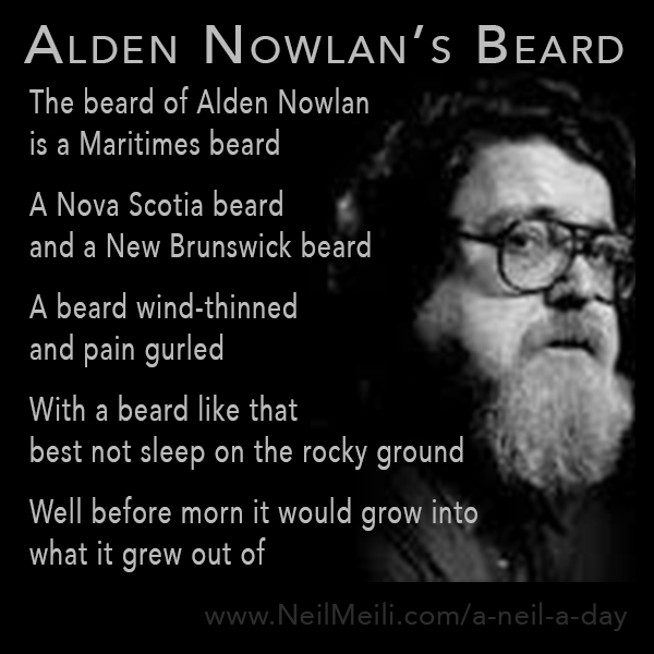 The beard of Alden Nowlan  is a Maritimes beard  A Nova Scotia beard and a New Brunswick beard  A beard wind-thinned  and pain gurled  With a beard like that best not sleep on the rocky ground  Well before morn it would grow into what it grew out of