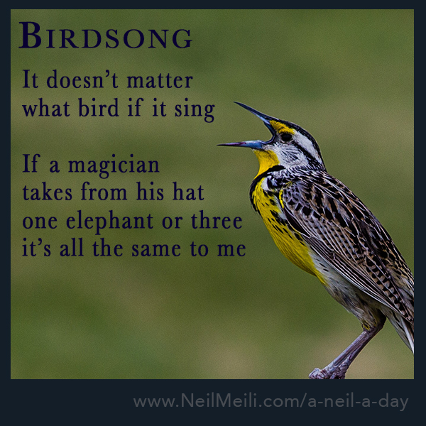 It doesn't matter what bird if it sing If a magician takes from his hat one elephant or three it's all the same to me