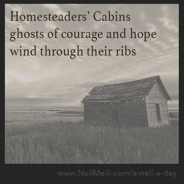 homesteaders' cabins ghosts of courage and hope wind through their ribs