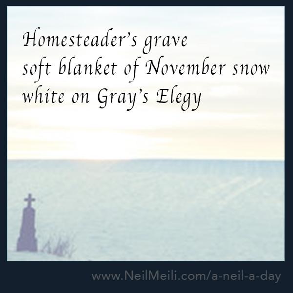 Homesteader's grave  Soft blanket of November snow white on Grey's Elegy