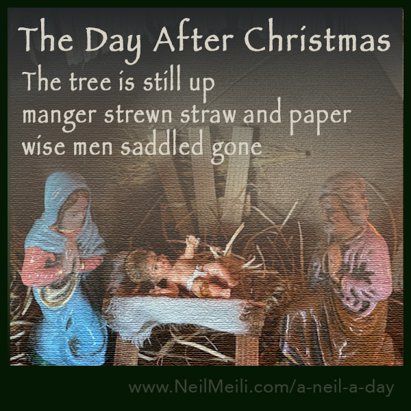The tree is still up manger strewn straw and paper wise men saddled gone