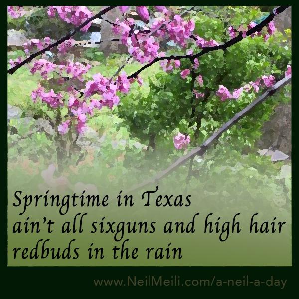 Springtime in Texas  Aint all six-guns and high hair redbuds in the rain