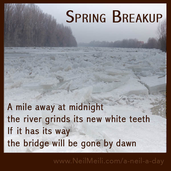 A mile away at midnight the river grinds its new white teeth If it has its way the bridge will be gone by dawn