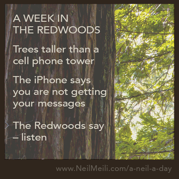 Trees taller than a  cell phone tower  The iPhone says you are not getting  your messages  The Redwoods say  – listen