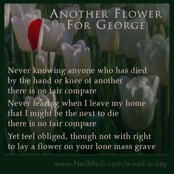 Never knowing anyone who has died by the hand or knee of another there is no fair compare  Never fearing when I leave my home that I might be the next to die there is no fair compare  Yet feel obliged, though not with right to lay a flower on your lone mass grave
