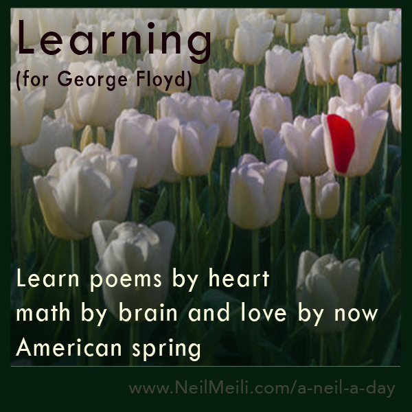 Learn poems by heart math by brain and love by now American spring