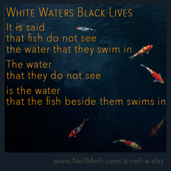 It is said that fish do not see the water that they swim in  The water that they do not see  is the water that the fish beside them swims in