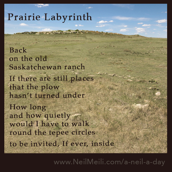 Back  on the old  Saskatchewan ranch  If there are still places that the plow  hasn't turned under  How long and how quietly would I have to walk round the tepee circles  to be invited, If ever, inside