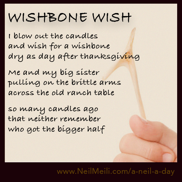 I blow out the candles and wish for a wishbone dry as day after thanksgiving  Me and my big sister pulling on the brittle arms across the old ranch table  so many candles ago that neither remember who got the bigger half