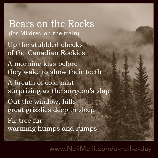 Up the stubbled cheeks of the Canadian Rockies  A morning kiss before they wake to show their teeth  A breath of cold mist surprising as the surgeon's slap  Out the window, hills great grizzlies deep in sleep  Fir tree fur warming humps and rumps