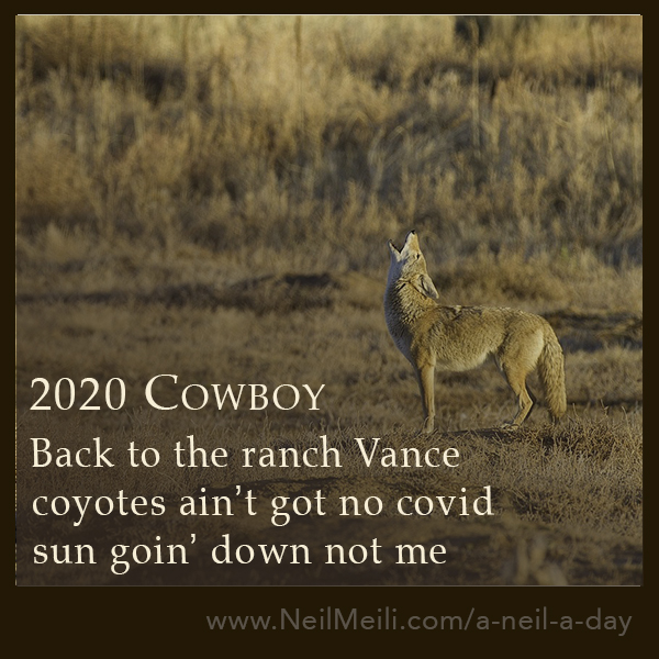 Back to the ranch Vance coyotes ain't got no covid sun goin' down not me