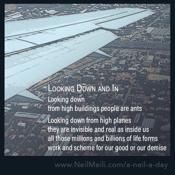 Looking down from high buildings people are ants  Looking down from high planes they are invisible and real as inside us all those millions and billions of life forms work and scheme for our good or our demise