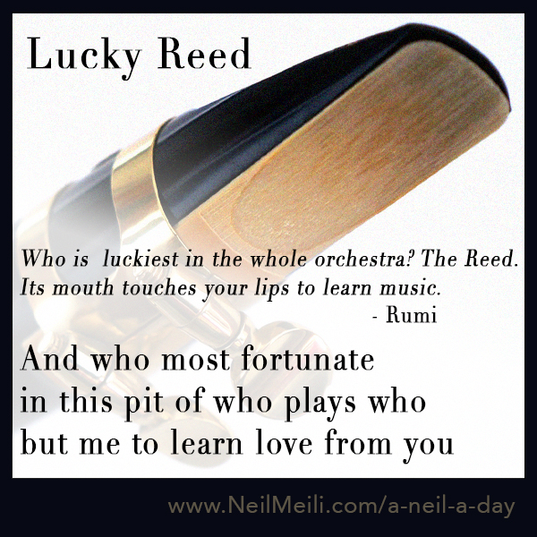 Who is  luckiest in the whole orchestra? The Reed. Its mouth touches your lips to learn music.  - Rumi  And who most fortunate in this pit of who plays who but me to learn love from you