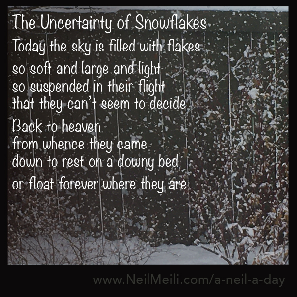 Today the sky is filled with flakes  so soft and large and light so suspended in their flight that they can't seem to decide  Back to heaven  from whence they came down to rest on a downy bed  or float forever where they are