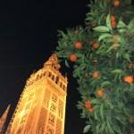 Seville 2018 – Day Three – Cordoba
