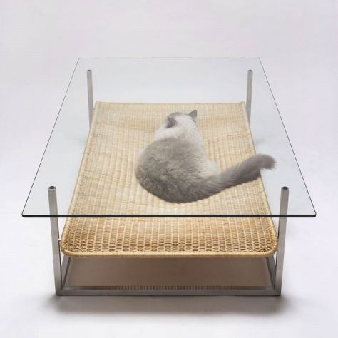 cat_furniture03