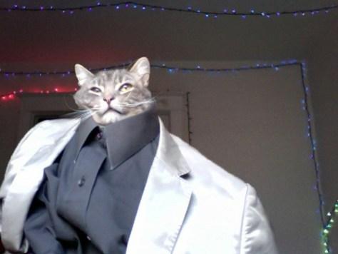 formal_cat07