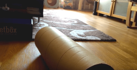kitten_sliding_tube06