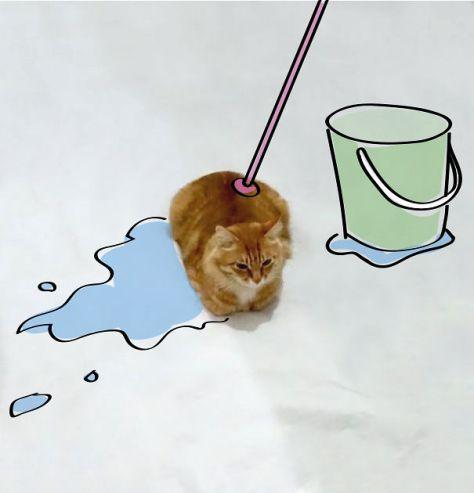 doodle_cat_photo08