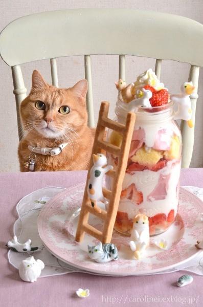 2016_02_cat_sweets06