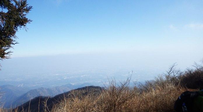 大山山頂から厚木方面の景色