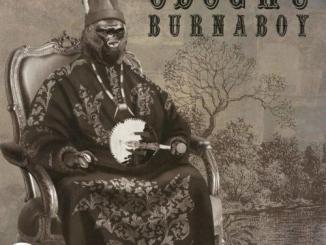 Free Mp3 download Burna boy Odogwu