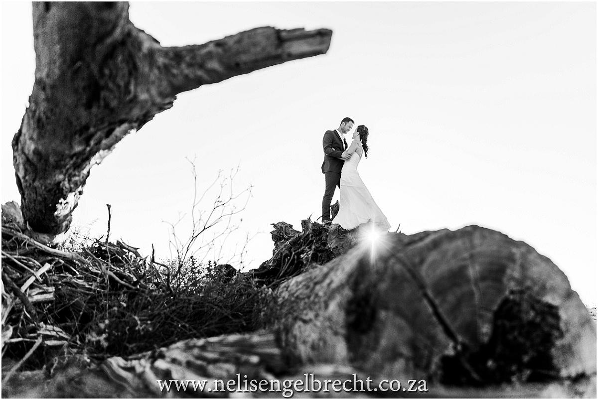 Nelis-Engelbrecht-Photography-751