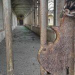 Certosa di Vigodarzere