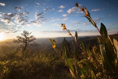 HD Mountains Roadless Area, Colorado