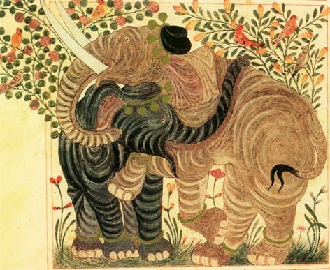 Los Ciegos Y El Elefante Junto Al Bosque