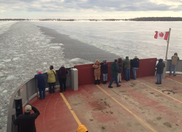 Birders riding across on the ferry to Amherst Island, eager to see some owls! (Photo by Alex Lamoreaux)