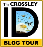 Blog tour logo
