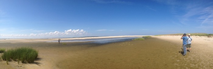 Panorama of South Beach mudflats